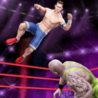 擂台摔跤手搏斗