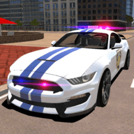 Mustang Police Car Driving 2021