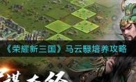 荣耀新三国马云騄培养攻略