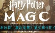哈利波特:魔法觉醒猫头鹰作用介绍