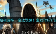 哈利波特:魔法觉醒室友作用介绍