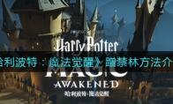 哈利波特:魔法觉醒蹭禁林方法介绍