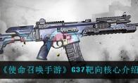 使命召唤手游G37靶向核心介绍