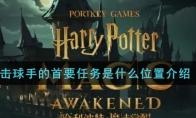 哈利波特:魔法觉醒击球手的首要任务是什么位置介绍