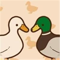鸭子还是鸭子
