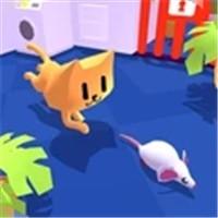 小猫捉老鼠