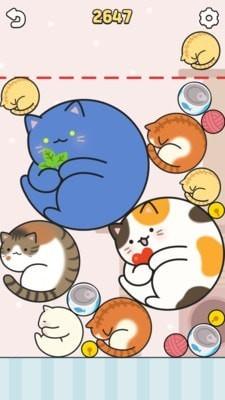 合成大肥猫